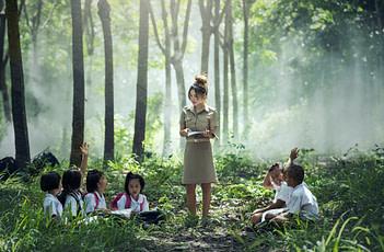 Quatre compétences cognitives pour un apprentissage réussi