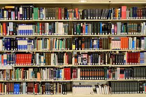 domaines d'étude