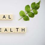 Principes de base de la santé mentale des enfants